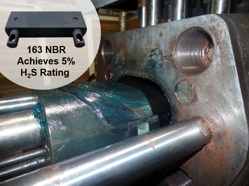 NBR 163 Achieves 5% H2S Rating